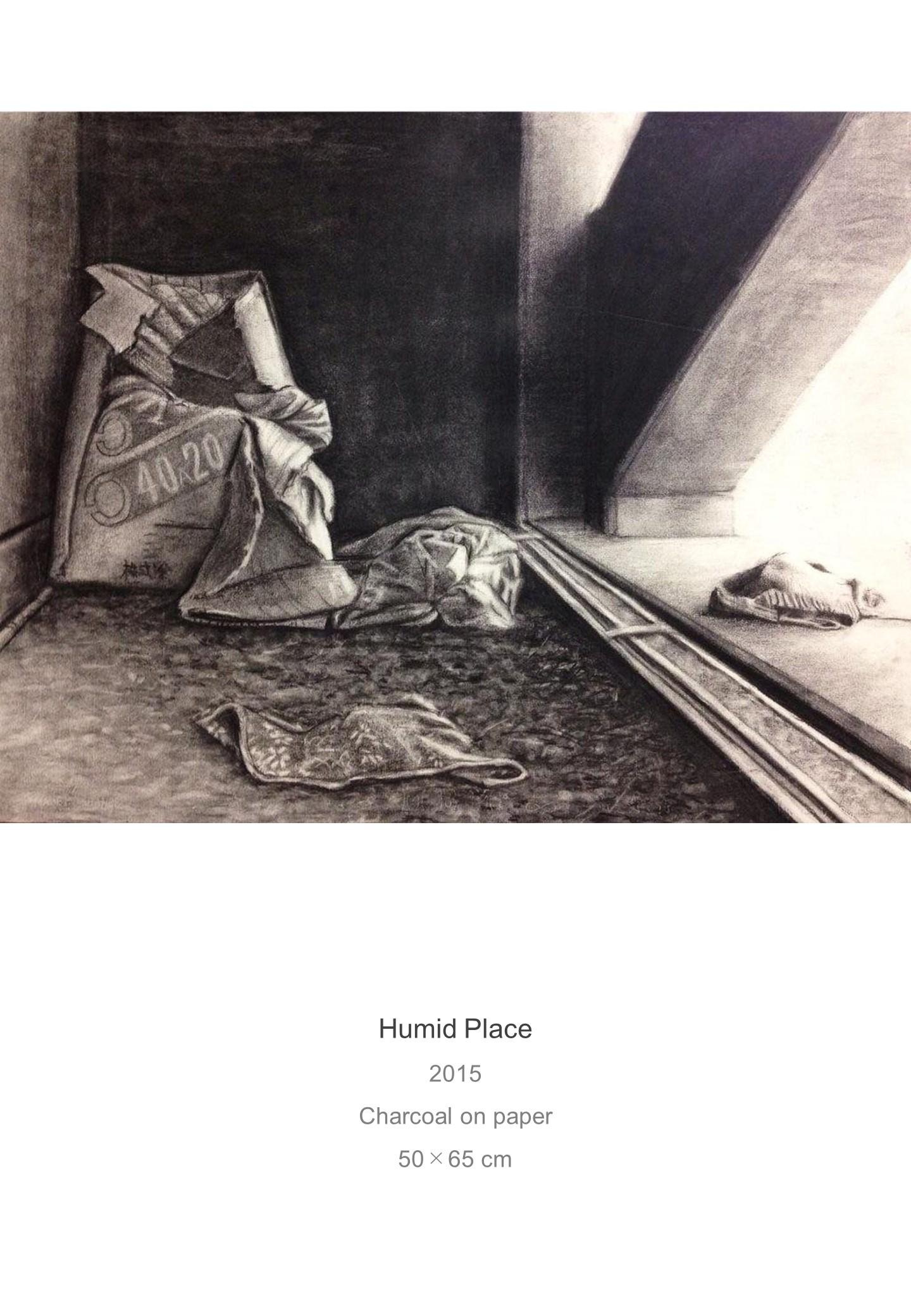 Shota Imai's Artwork of Humid Place
